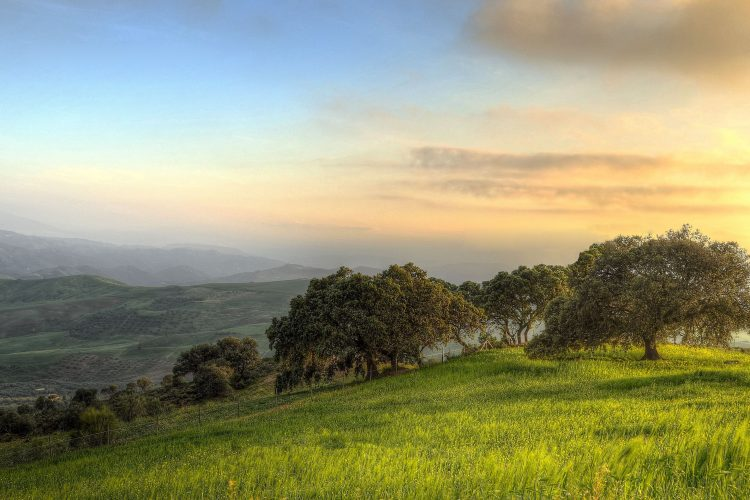 Image of country scene with rolling hills, trees, and a beautiful sunset